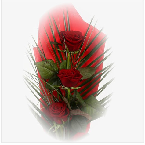 Trio Elegant Red Roses-FREE DELIVERY