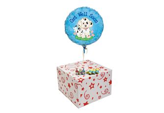 GET WELL SOON DOGGIE-GIFT BOXED-- FREE PARTY POPPERS & BLOW HORNS