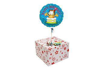 GARFIELD BIRTHDAY-GIFT BOXED-FREE PARTY POPPERS & BLOW HORNS