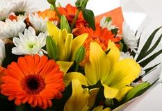 Orange Burst Bouquet-Clear Savings-Clear Prices-FREE DELIVERY