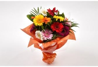 Gerbera Princess Special Bouquet-FREE DELIVERY