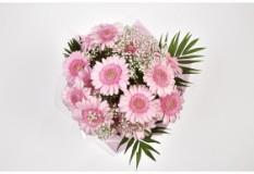 Pink Lady Gerbera Bouquet-FREE DELIVERY