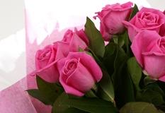 12 Pink Roses Bouquet - FREE DELIVERY-Clear Savings-Clear Prices-Compare The Quaility