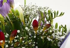 Freesias & Gypsophila Bouquet - FREE DELIVERY-Clear Savings-Clear Prices-Compare The Quaility