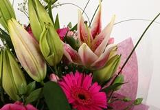 Pink Florence Bouquet-FREE DELIVERY