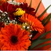 alternative image for Red Fall Bouquet-Clear Savings-Clear Prices