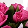 alternative image for 12 Pink Roses-Clear Savings-Clear Prices-FREE DELIVERY