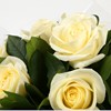 alternative image for 12 White Roses Bouquet-Clear Savings-Clear Prices-FREE DELIVERY