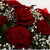 alternative image for 24 Red Roses With Gypsophila - FREE DELIVERY