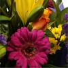 alternative image for Vibrant Delight Bouquet-FREE DELIVERY