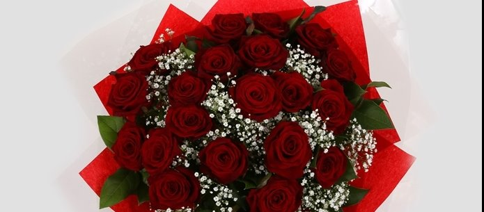 24 Red Roses With Gypsophila