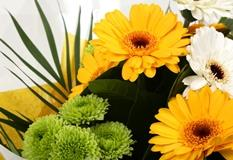 Yellow Cream Bouquet-Clear Savings-Clear Prices-FREE DELIVERY