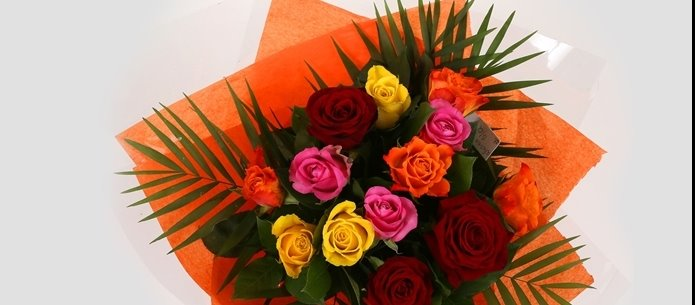 12 Beautiful Roses-OFFER ONLY FEW DAYS! Clear Savings-Clear Prices