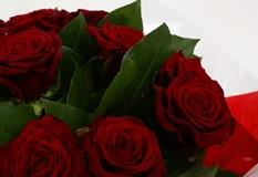 12 Red Roses Bouquet - FREE DELIVERY